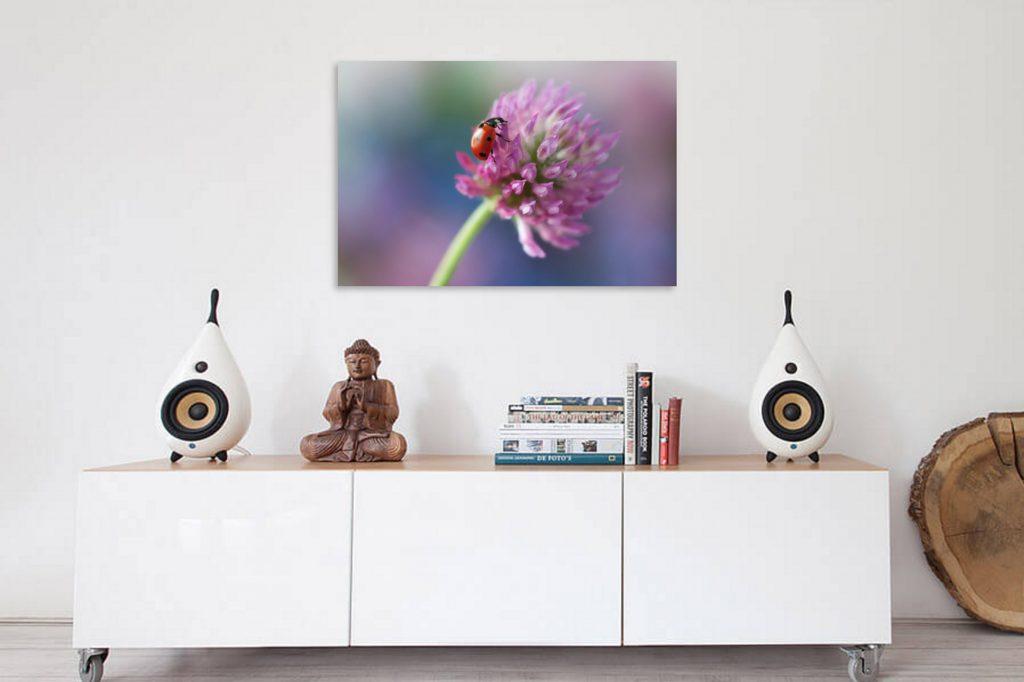 Schilderij lieveheersbeestje