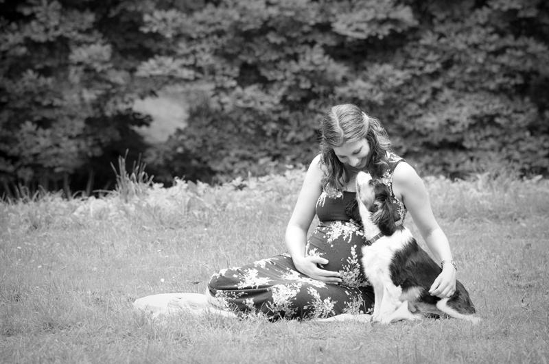 Zwangerschap hondje